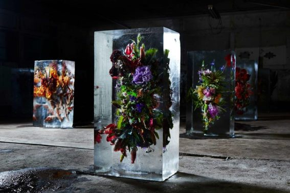 Iced Flowers Makoto Azuma 1